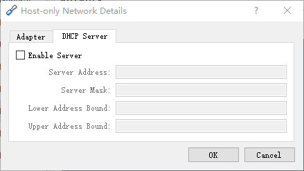 Disabled DHCP for Host-only